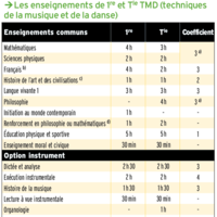 Tableau horaire bac TMD